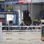 14/09/2016 ; Lanaken ; Lanaken World Breeding & Belgium Championships ; Sportfot